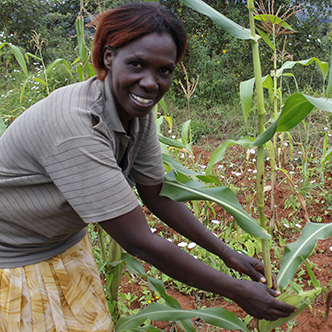 Christine with one of her maize plants