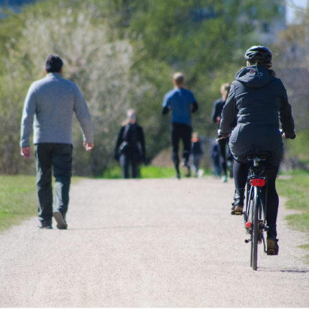 People cycling, walking and jogging along a park path