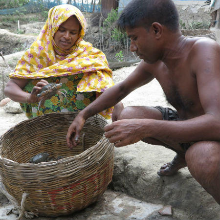 Crab farmers, Bangladesh