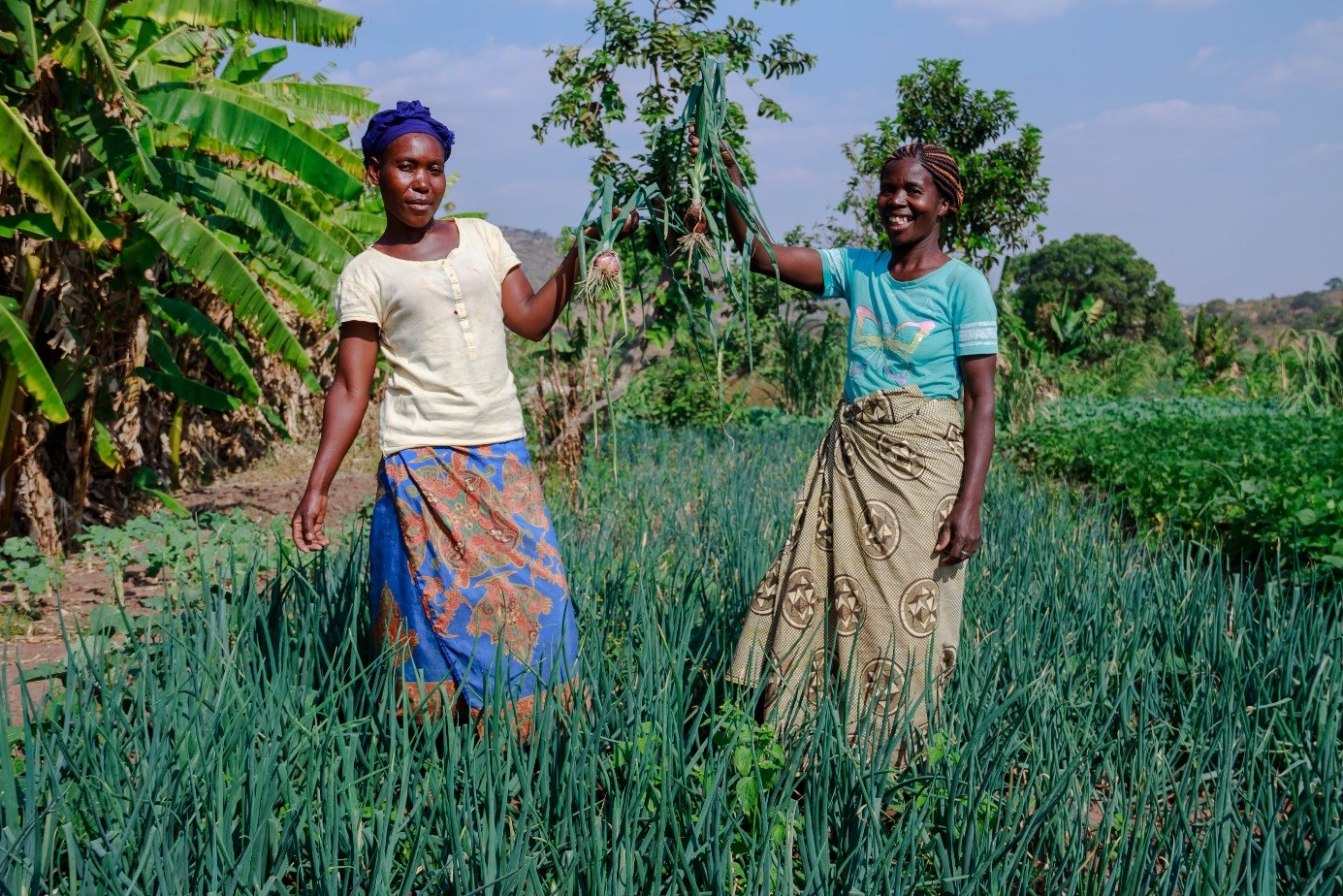 Christian Aid Scotland empowering women in Zambia through their project Making Agriculture a Business