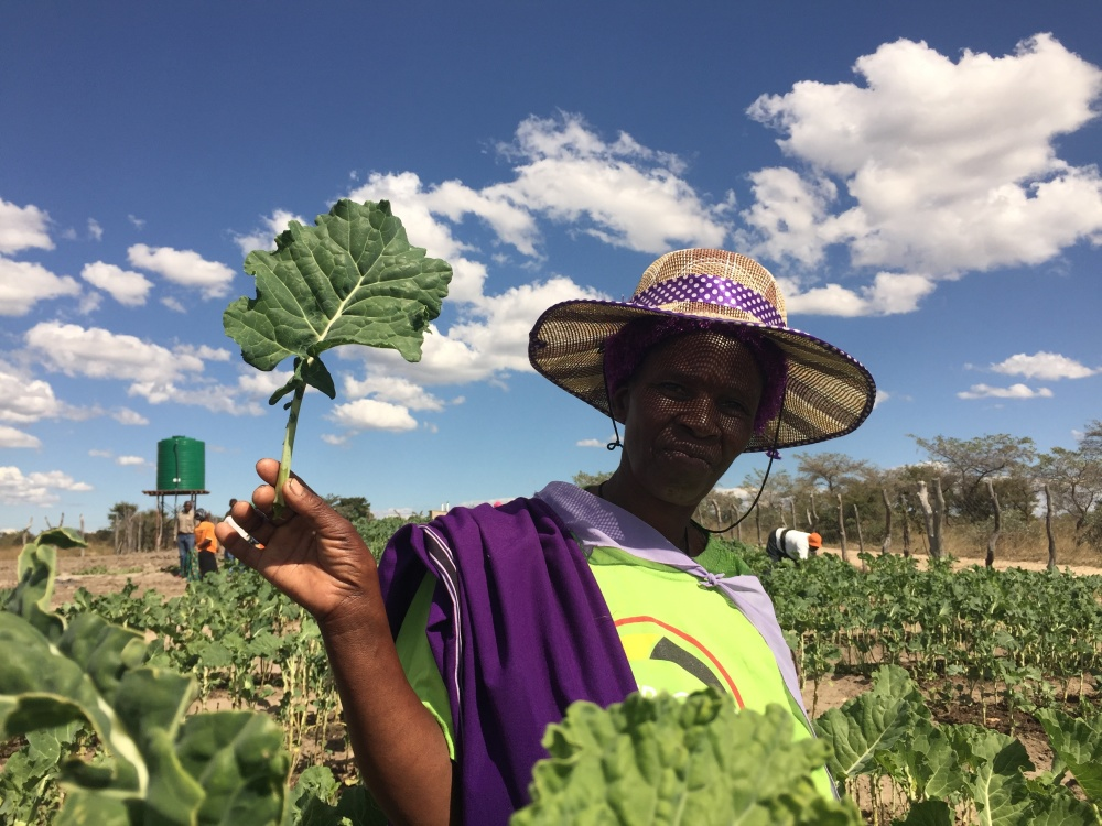 Medelina is a member of the Mthombowesizwe Market Garden.