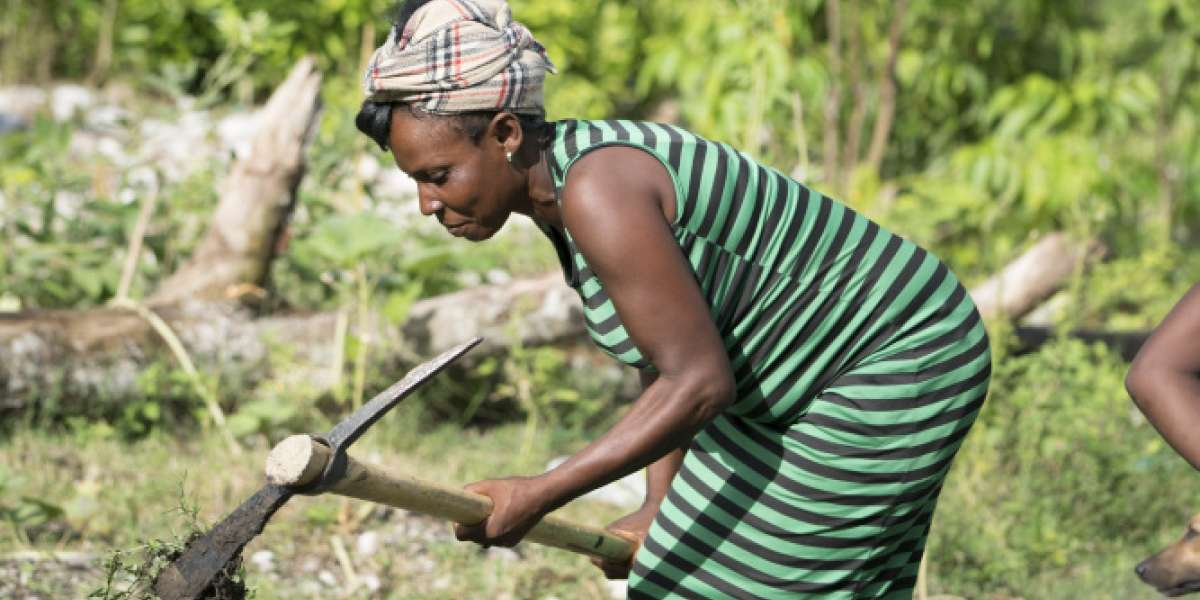 Lady farming: Stories of Hope