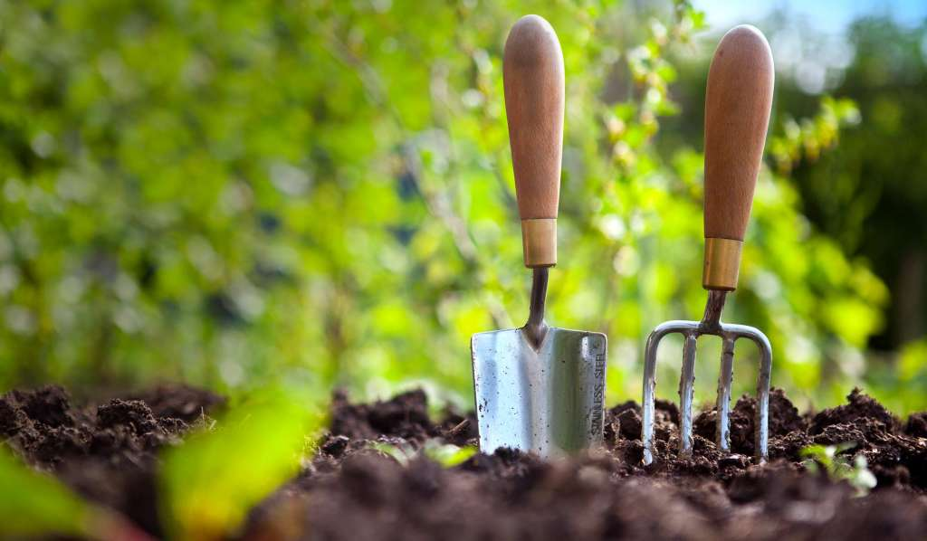 A fork and a trowel stuck in the soil, in a sunny garden