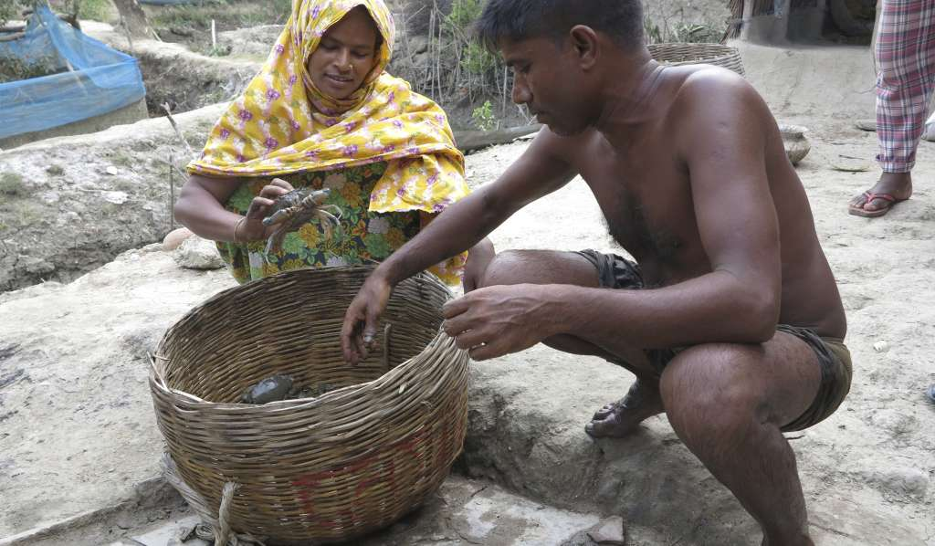 Mondura and Mohamed crab farmers in Bangladesh