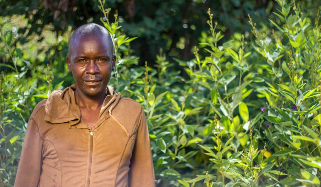 Farmer in Malawi stands in front of his pigeon pea crop