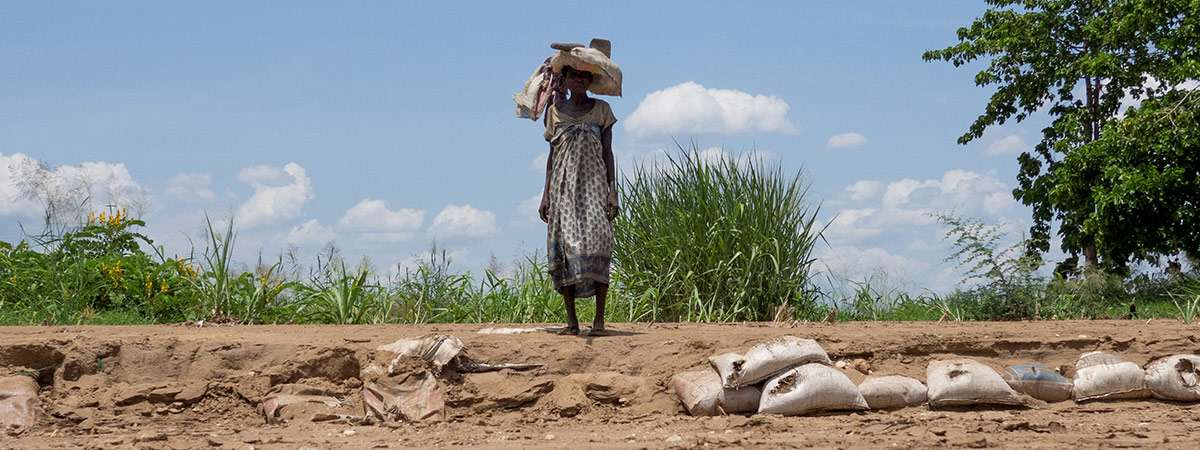 A woman carries tools in an arid landscape