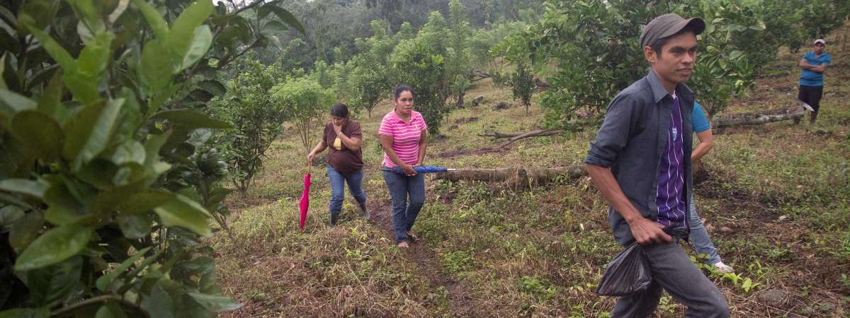 Farmers in Honduras
