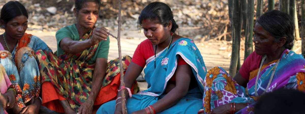 Indian women being taught to cultivate lac