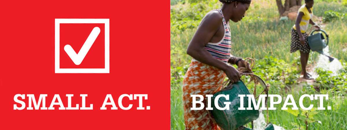 A banner with a red box and white tick on the left saying Small Act and on the right saying Big Impact