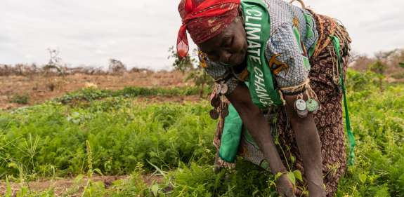 Rosalia, a climate advocacy champion in Kenya, tends to her crops