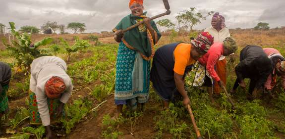 Florence Muthiani and her group farming their plot in the village of Kyeng'e.