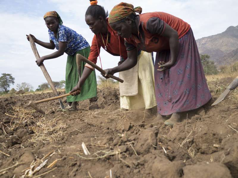Addis women's group working together in the fields