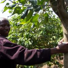 Coffee farmer, Burundi