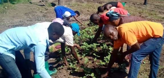 Burundi partners working with agricultural students