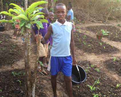 Planting a tree in Sierra Leone Blackburn Harvest appeal Christian Aid