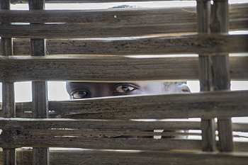 A person looks through a gap in a wooden structure