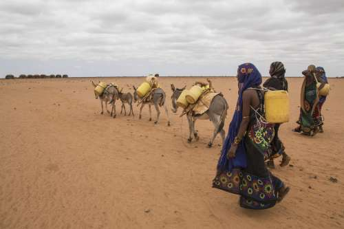 Women walk for water in Marsabit county, Kenya