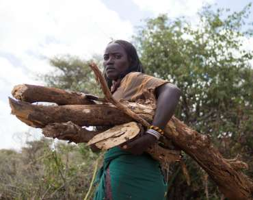 Loko Jarso carrying firewood, Ethiopia