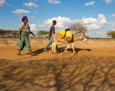 Florence Muthiani walks to the Mikuyuni earth dam to collect water.