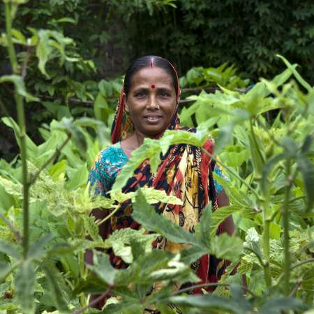 Community adaptation and women's empowerment in Bangladesh