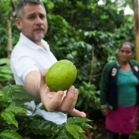Reinaldo Plasencia holds out a piece of fruit that has been grown locally in Nicaragua