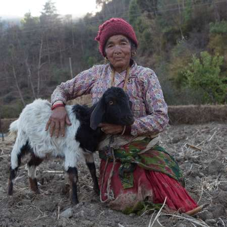 Elderly woman sits with goat