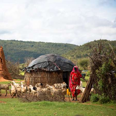Fatuma Kusheni outside her home in Ethiopia, with her herd of goats