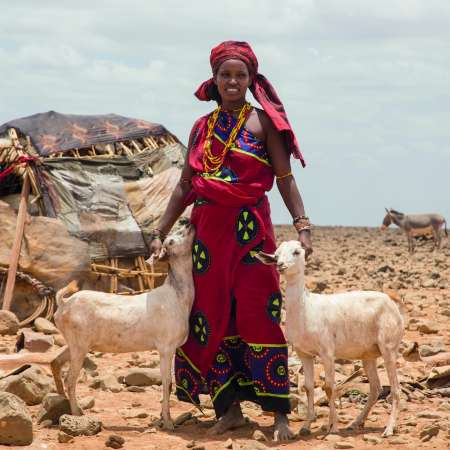 Christian Aid Charity Gifts Loko standing with two goats
